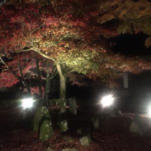 永源寺さんの紅葉ライトアップに行って来ました✨④お昼に行ってもキレイですし、名物こんにゃくも美味しいです♡
