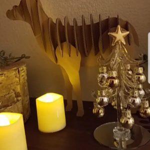 我が家はすっかりクリスマス~🎅まだまだと思っていたのにすぐにやってきますね🌟
