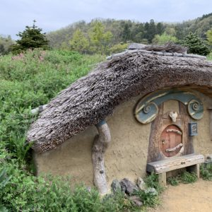 小さな妖精のお家⌂❁°˖✧